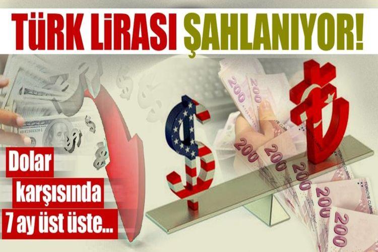 Türk lirası 7 ayda yüzde 9'a yakın değer kazandı