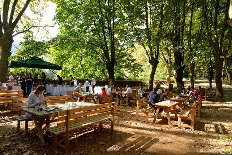 MESA Orman'da brunch neşesi
